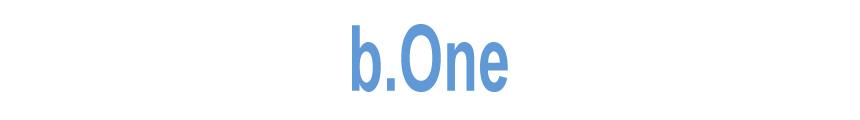 Баннерная система b.One